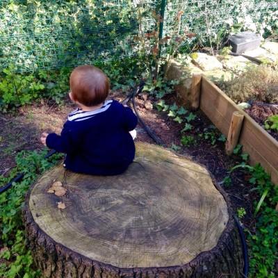 Un pomeriggio in cascina tra pappe e natura!